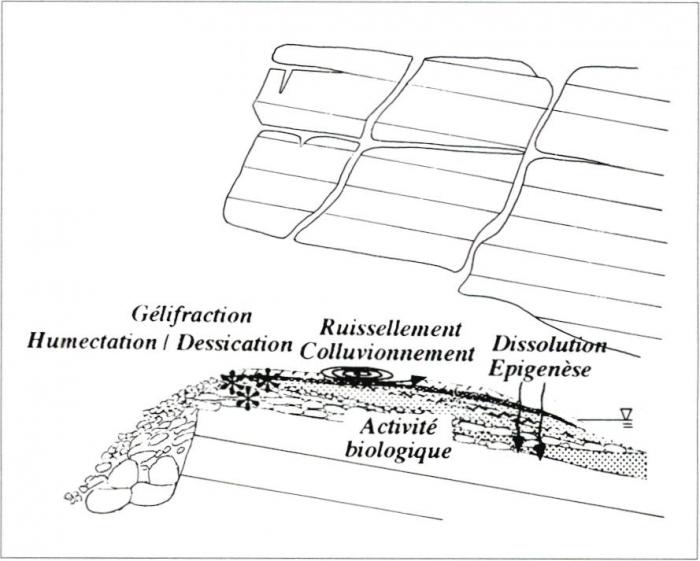 Dynamique Du Paysage Formation Des Dépôts Archéologiques En Grotte