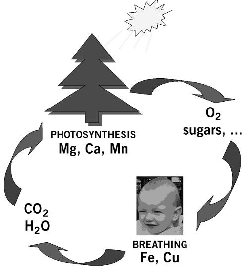 chimie structurale molécule de méthane