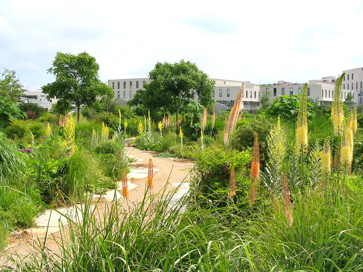 Jardins, paysage et génie naturel - Jardins, paysage et ...