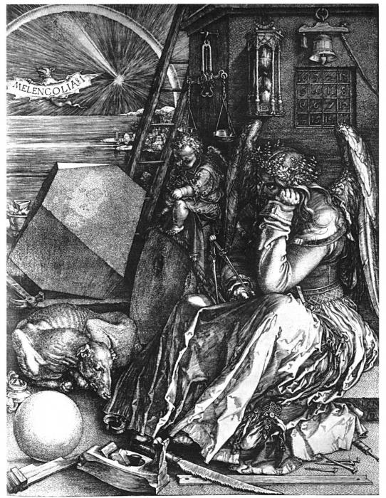 Rosa limensis - Capitulo 2. Anatomía de la melancolía: Santa Rosa de ...