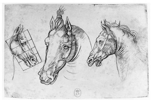 dessin cheval de vinci