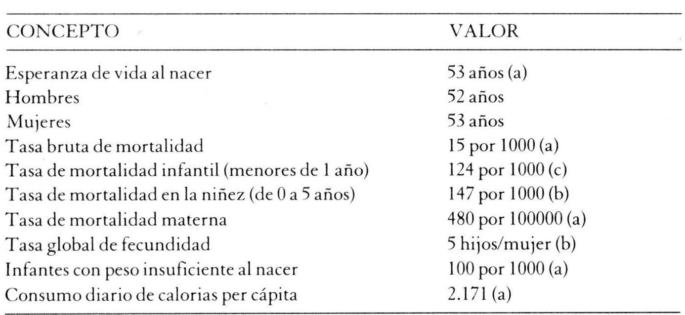 b7164968f Mujeres de los Andes - El embarazo en mujeres aymaras migrantes. Un ...