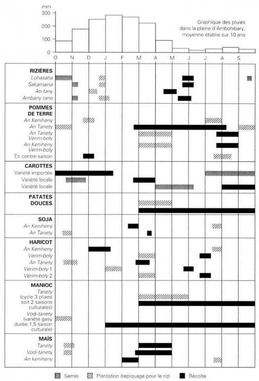 saison agricole calendrier