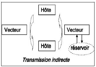 La lutte antivectorielle en france modes de transmission - Deux robinets coulent dans un reservoir ...