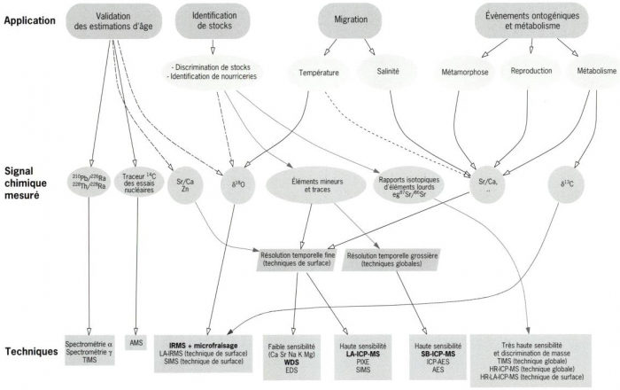 comparer et de contraster l'utilité des techniques de datation absolues et relatives