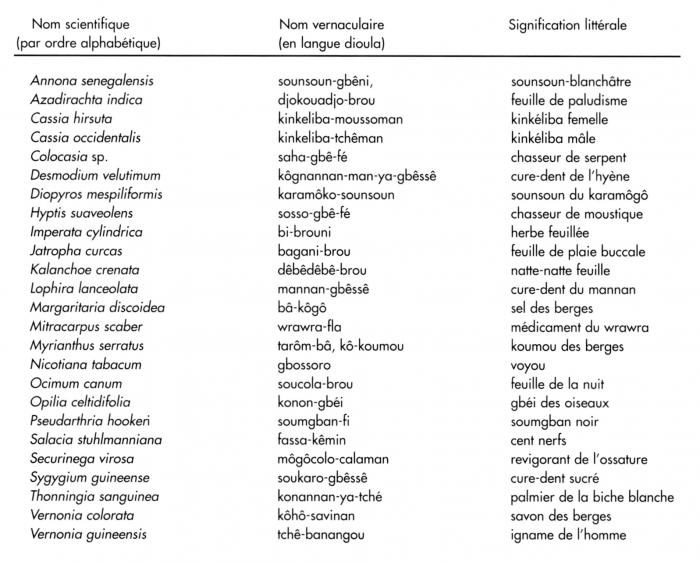 Des sources du savoir aux m dicaments du futur diversit - Noms de fleurs et plantes ...