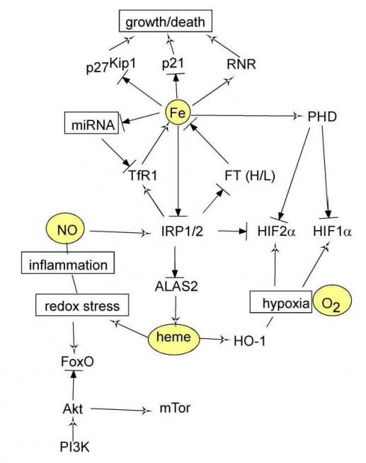 how to use monopropellant ksp