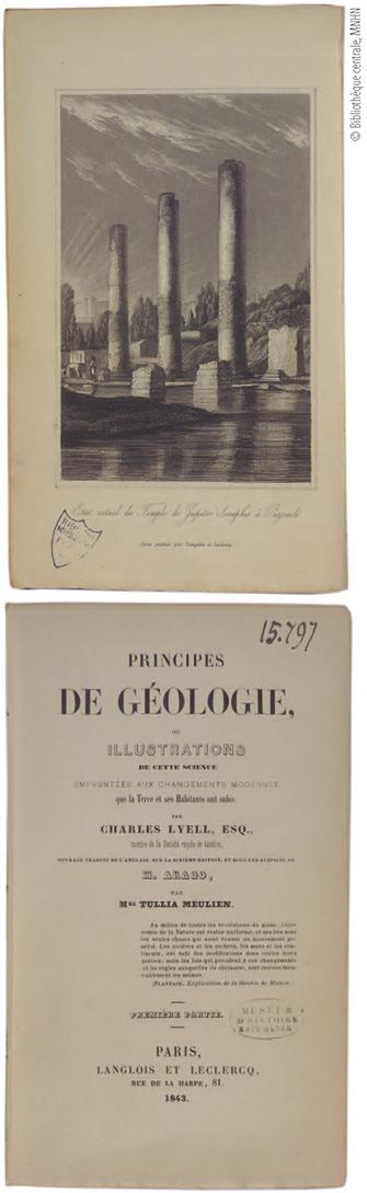 Lextinction Despèce Le Dix Neuvième Siècle