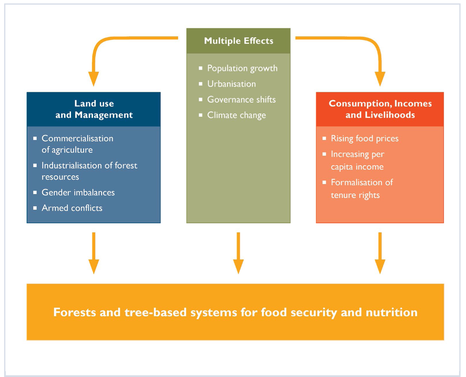 foto de Forests and Food - 4. Drivers of Forests and Tree-based Systems ...