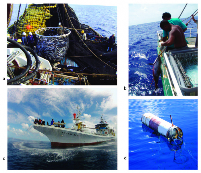Fisheries in the Pacific - Overview of tuna fisheries, stock