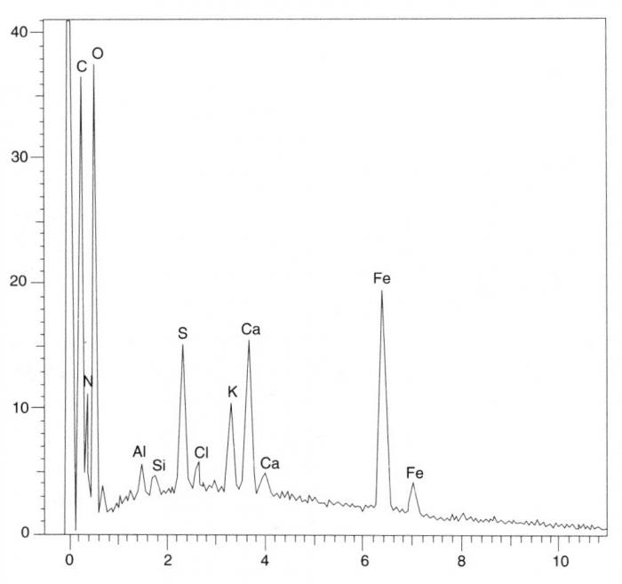 L alun de Méditerranée - L utilisation de l alun dans la ... d9d7b5e7b67