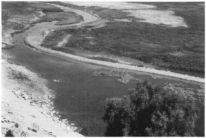 Vitesse datant bataille Creek Michigan meilleur endroit pour trouver le branchement aléatoire