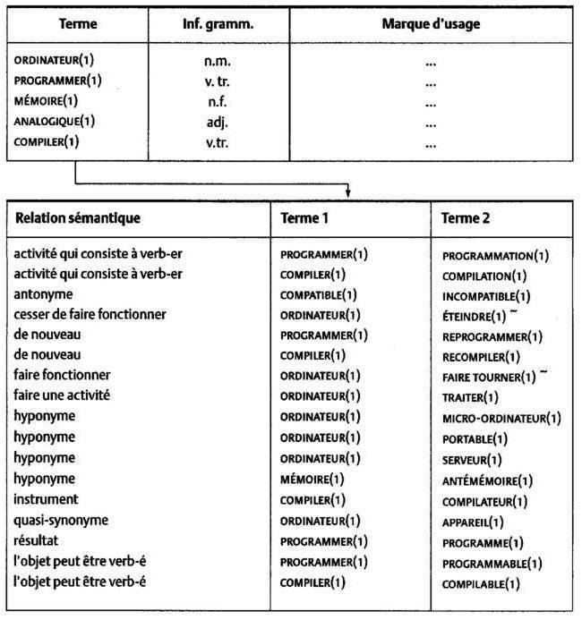 La Terminologie Principes Et Techniques 8 Organisation Des